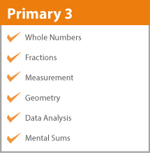 Primary 3 Math Syllabus